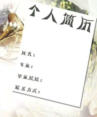 2011应届生最新时尚简历封面