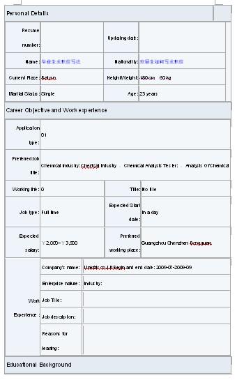 2011应届生英文简历模板下载图片