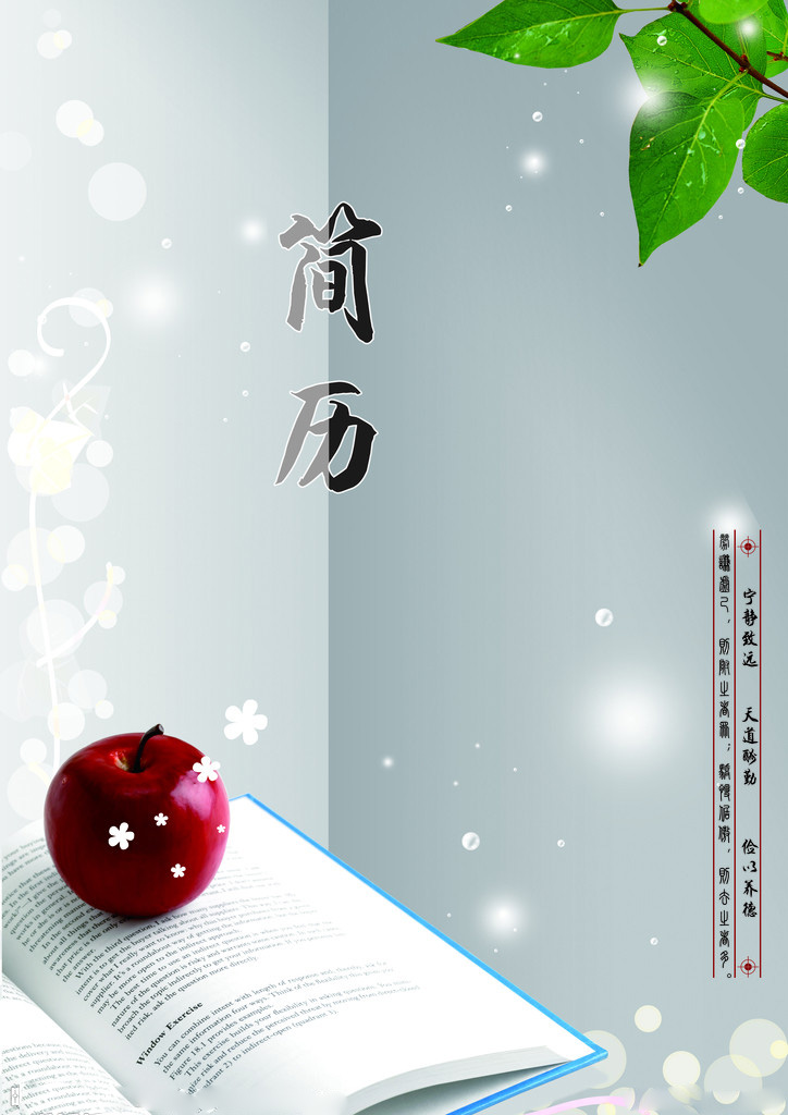 深圳人才网 职场资讯 个人简历封面  深圳人才网版权与免责声明